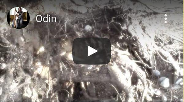 vikingverhalen muziek donderelf noordse mythes